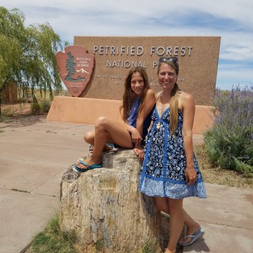 Day 32 . Petrified National Forest & Route 66