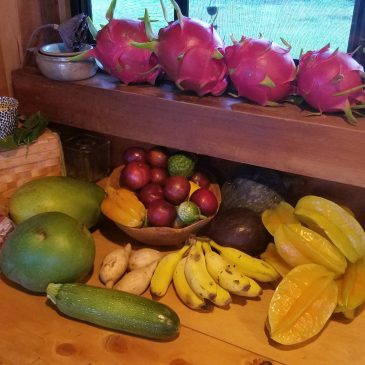 Day 17 . Hawi Farmers Market