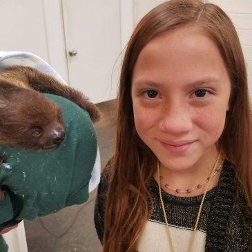 My Slothsome Day