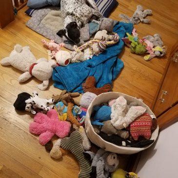 Lili's Mess